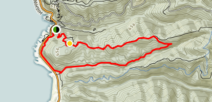 Cook's Ridge and Gwynn Creek Loop Trail Map