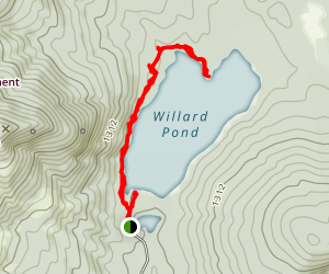 Willard Pond Trail Map