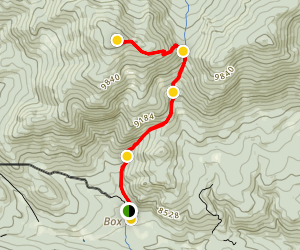 West White Pine Mountain 4x4 Trail Map