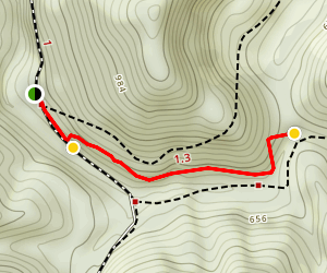 Beaver Creek Falls Trail Map