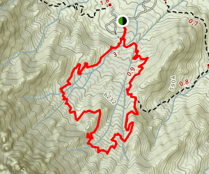 Pine Tree Trail Map