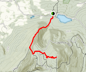 Mount Williams Trail Map