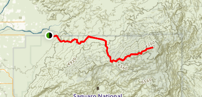 Mica Mountain via Douglas Spring and Cow Head Saddle Trail Map