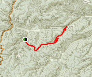 Willie White Trail Map