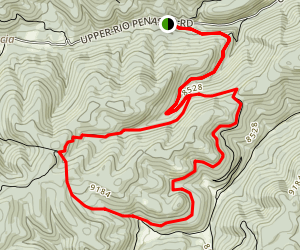 Willie White and Wills Canyon Loop Trail Map