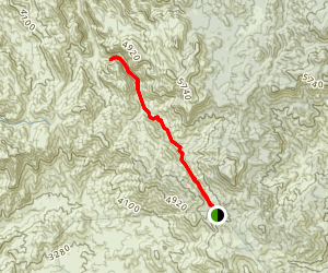 Rogers Canyon Trail Map