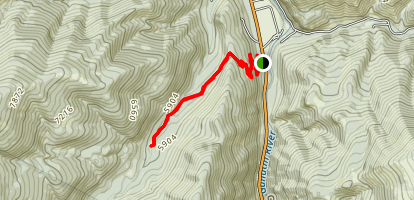 Hell Roaring Creek Trail Map