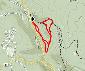 Forest Cathedral Trail Map