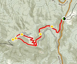 Appalachian Trail: Elk Garden to Buzzard Rock  Map
