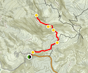 Mount Reba Backcountry Ski Map