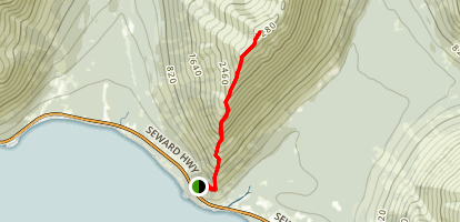 Bird Ridge Trail Map