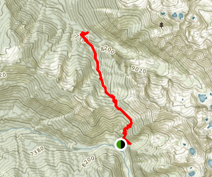 Timber Gap Trail Map
