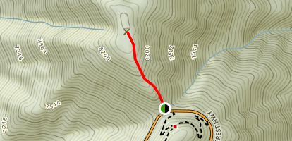 Dawson Saddle to Mount Lewis Map