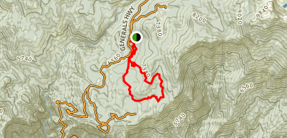 Giant Forest Loop Trail Map