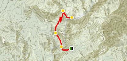 Freel Peak from Armstrong Pass Map
