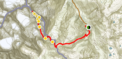 Mont Dolent, Refuge Fiorio and Grands Grépillons Trail Map