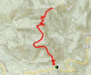 Kettle Falls and Jungle Hill Trail Map