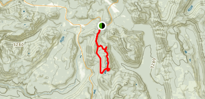 Palmateer Point and Twin Lakes Trail Loop Map