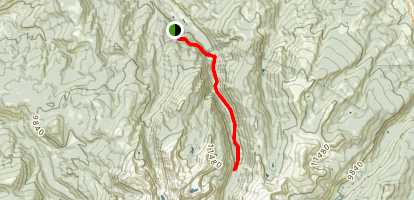 Holy Cross Wilderness - Eagle Ranger District Wilderness Area Trail Map