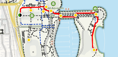 Museum and Lakefront Walking Tour Map