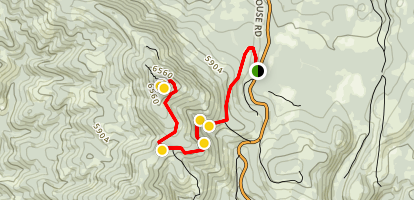 Robbs Peak and Hut Trail Map