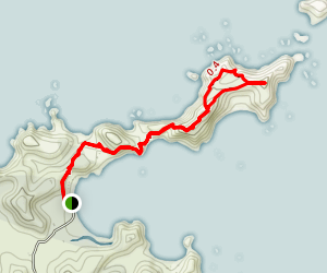 Omiru Trig Path to Mahinepua Bay Peninsula Map