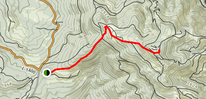 Larch Mountain Trail Map