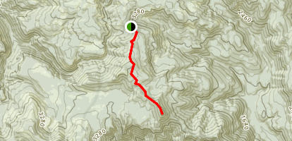 Observation Peak Trail Map