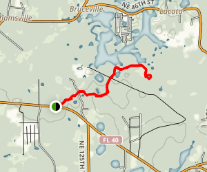 Ocala 28th Trail Map