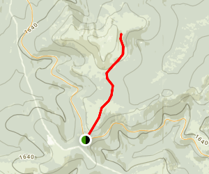 Summit Trail to Wickersham Dome Map
