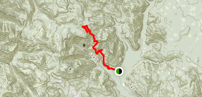 Observation Trail to Observation Peak Map