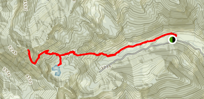 Thorp Mountain Trail Map