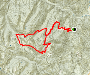 Foster Lake Loop Map