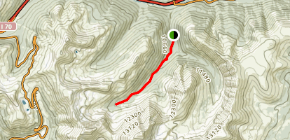 Grizzly Gulch Trail Map
