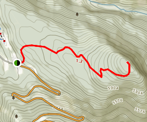 Stoney Squaw Trail Map