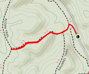 Kaintuck Trail: Mushroom Section Map