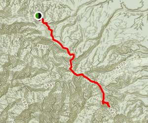 Mogollon Baldy via Crest Trail  Map