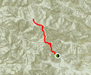 San Mateo Peak via Apache Kid Trail Map