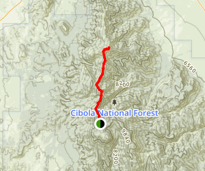North Baldy Trail Map