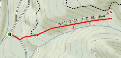 Old Tree Trail Map
