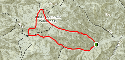Argentina Peak and Little Bonito Trail Loop Map