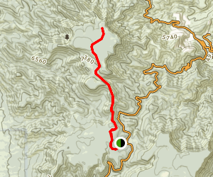 Woodchute Trail Map