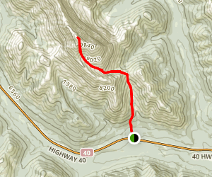 Mist Mountain Trail Map