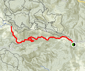 Willow Creek Road Trail Map