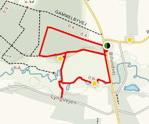 Ringgivestierne Trail Map