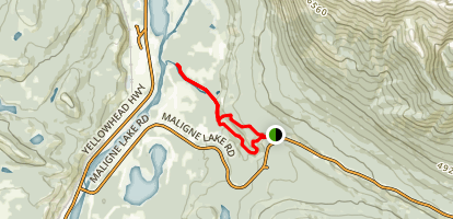 Maligne Canyon to Old Fort Point Trail Map
