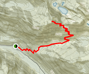 Bare Mountain Trail Map