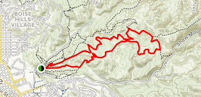 Buckhorn, Shane's, and the Central Ridge Trails Map