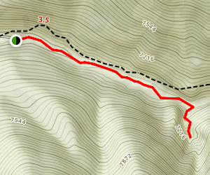Periodic Spring Trail Map