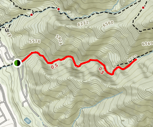 Burch Creek Trail Map
